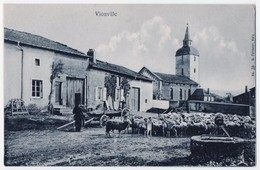 Vionville - Ferme Et Moutons, ± 1910 - France