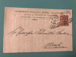 PALERMO STABILIMENTO ENOLOGICO CASTEL CALATTUBO PROPRIETA' DEL PRINCIPE DI VALDINA  1900    VINO  UVA - Palermo