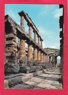 Modern Post Card Of Paestum,Capaccio,Salerno, Campania, Italy.,D60. - Salerno