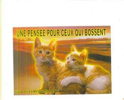 CARTES GRANDS FORMATS + CARTES DE VOEUX / Lot De 8.500 Kilos - Cartes Postales