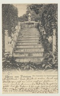AK  Gruss Aus Potsdam Cascade Im Paradiesgarten 1905 - Potsdam