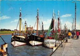 Nieupoort - Port De Pêche - Nieuwpoort