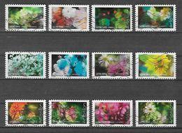Nouveauté Série ECLOSION - Used Stamps