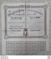 EGYPT-  THE COTTON SPINNING WEAVING & DYEING CO.( KARNAK ) VVVRARE - Shareholdings