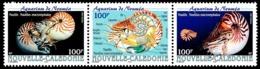 NOUV.-CALEDONIE 2001 - Yv. 840 841 Et 842 **   Faciale= 2,51 EUR - Mollusques Nautiles (3 Val Se Tenant)  ..Réf.NCE25503 - New Caledonia