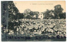 - 6 - Viet Nam - Hanoi, Tonkin, Le Petit Lac Couvert De Lotus, Cliché Trés Rare, Non écrite, TBE, Scans. - Viêt-Nam