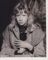 WHISTLE DOWN THE WIND HAYLEY MILLS KATHY   24*18cm CINE ACTORS ACTORES - Personalità