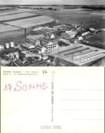 NB - [511640]B/TB//-France  - (80) Somme, Roisel, La Sucrerie-Conserverie,Usines & Industries - Roisel