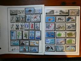 TERRES AUSTRALES ET ANTARCTIQUE FRANCAISE Collection Très Avancée Neuf Sans Charnière Faciale Moins 60 % - Terres Australes Et Antarctiques Françaises (TAAF)