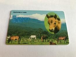 South Korea - ChIp - Horse - Corea Del Sur