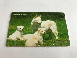 South Korea - ChIp - Dogs - Korea (Zuid)