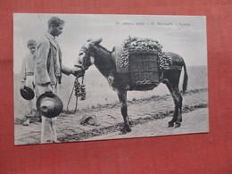 Onion Seller  St Michaels  Portugal > Açores      Ref 3828 - Açores