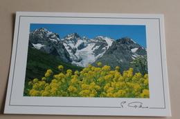 Regard Sur La Montagne  M 3363  PIERRE GILLOUX - Altri Comuni