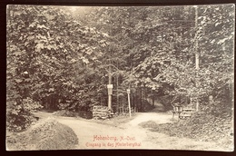 HOHENBERG N.OEST EINGANG IN DAS HINTERBERGTHAL - Lilienfeld