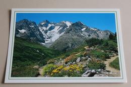 La Meije Le Jardin Alpin    M 2703  PIERRE GILLOUX - Altri Comuni