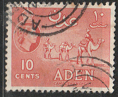 PIA  -  GRAN BRETAGNA - ADEN   -  1953-58  : Carovana Di Cammelli -   (YV 50) - Aden (1854-1963)