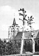 St-Laurentius Kerk - Zedelgem - Zedelgem