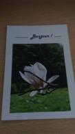 CP  -  BONJOUR - Cartes Postales