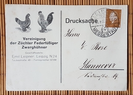 Werbe- Drucksache Vereinigung Der Züchter Fedetfüssiger Zwerghühner, Leipzig, Gelaufen 1932 - Cartas