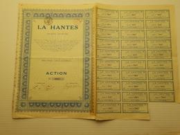 Titre Belge: La Hantes à Leval Chaudeville - Shareholdings