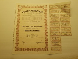 Titre Belge : Verlica Momignies - Shareholdings