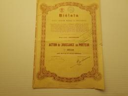 Titre Belge : Bielaia - Shareholdings