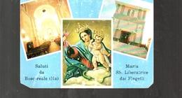 1016 Saluti Da Boscoreale Napoli-madonna Liberatrice - Italia