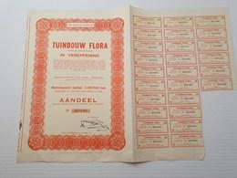 Titre Belge : Tuinbouw Flora à Mortsel - Shareholdings
