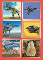 FIGURINE- LOTTO DI 10 FIGURINE  ANIMALI PREISTORICI - ED.AGOSTINI - STICKER  MANIA - Adesivi