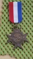 Medaille :Netherlands  -  Medaille -zwemvierdaagse Nederland / Vintage Medal - Walking Association - Nederland