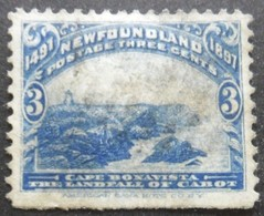 TERRE NEUVE N°50 Oblitéré - Newfoundland