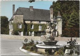 CPSM  Viré  Le Vieux Chateau - Frankrijk