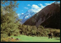 Ak New Zealand | Mount Cook, Mount Cook National Park | Sent 16.10.1984 To Denmark - New Zealand