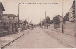 CPA Montesson - Route Du Vésinet (avec Animation) - Montesson