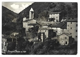 2444 - BIAGIONI PAESE 1961 BOLOGNA ALTO RENO - Italia
