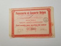 Titre Belge : Peausserie Et Couperie Belges - Shareholdings