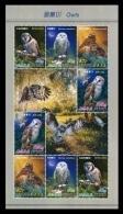 North Korea 2013 Mih. 5992/95 Fauna. Birds. Owls (M/S) MNH ** - Korea (Nord-)