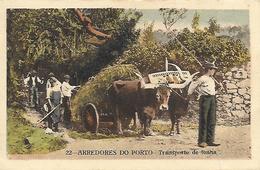 Portugal )  ARREDORES DO PORTO  - Transporte De Lenha - Porto