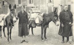 BAGNERES De BIGORRE - 65 - Laitières Du Pays - ânes - Bagneres De Bigorre