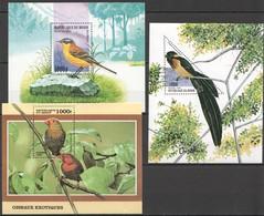 E509 1997,1999 DU BENIN FAUNA BIRDS OISEAUX !!! 3BL MNH - Birds