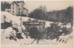 Cpa Corse Vizzavona Le Tunnel Animée - Francia