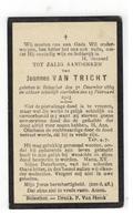 DP Joannes VAN TRICHTgeboren Booischot 1869,gestorven Booischot 1923 - Religione & Esoterismo