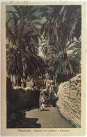 V 57003 Libia Italiana - Tripolitania - Viottolo Tra Le Palme A Gadames - Libia