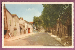 Cp Marssac Avenue De Gaillac - éditeur Apa Poux - Otros Municipios