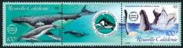 NOUV.-CALEDONIE 2001 - Yv. 844 Et 845 **   Faciale= 1,68 EUR - Tryptique Baleines à Bosse  ..Réf.NCE25505 - New Caledonia