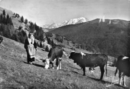 Col Des Aravis (73) - Pâturages Au Col - Francia