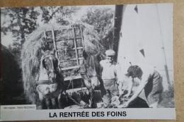 ROUVRES EN WOEVRE - Le Moulin Photo De 1948 - ( 55 Meuse ) - Francia