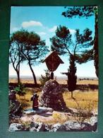 (FG.V11) ALTAMURA - IL CROCIFISSO DI SANT'ELIA Sulla Strada Statale 96 (BARI) Viaggiata 1968 - Altamura