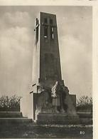 Orig Photo All WW2 : VERDUN : Butte De VAUQUOIS . ( 55 ) MEUSE . - 1939-45