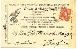 1896 AVELLINO  CARTOLINA COMMERCIALE PUBBLICITARIA AGRICOLA ENOLOGICA VINO - Italia